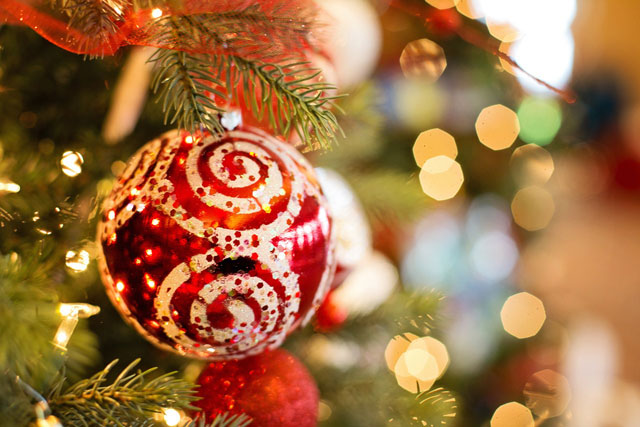 holiday joy Holiday Joy!